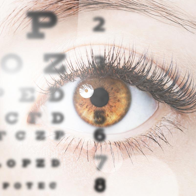 optometry-square